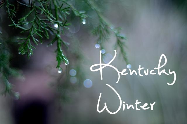 KentuckyWinter