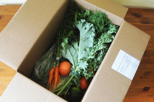 greengrocer4