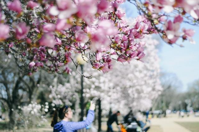 Spring-23