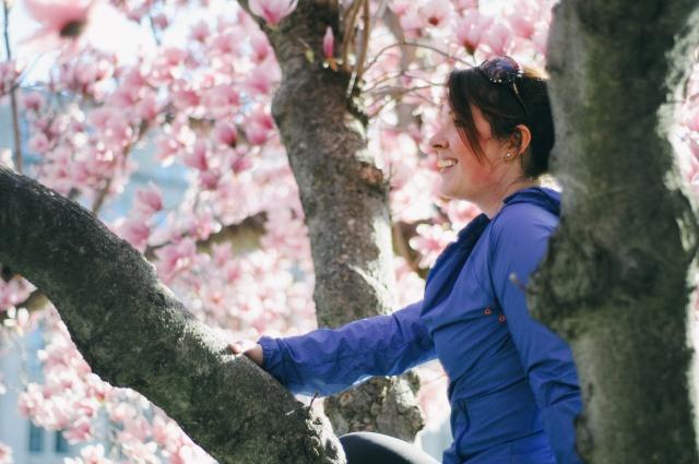 Spring-41