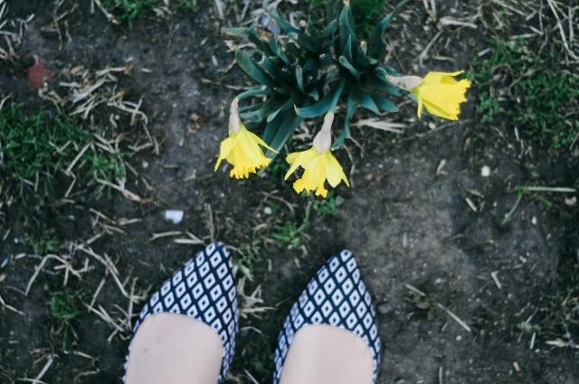 Spring-51
