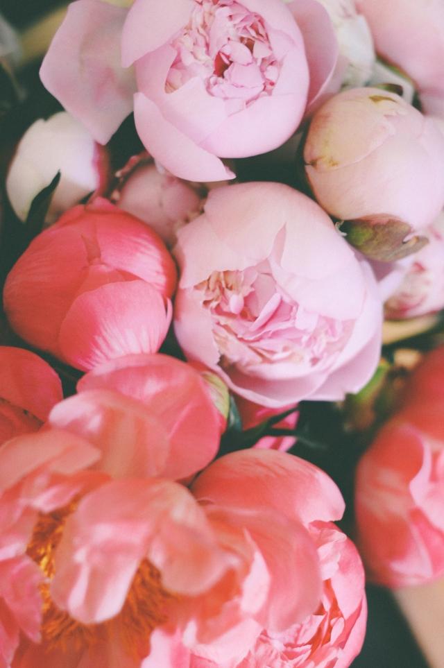Spring-131