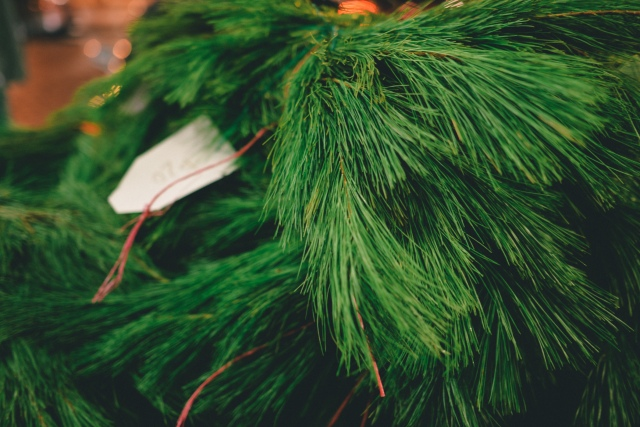 Christmastree-6