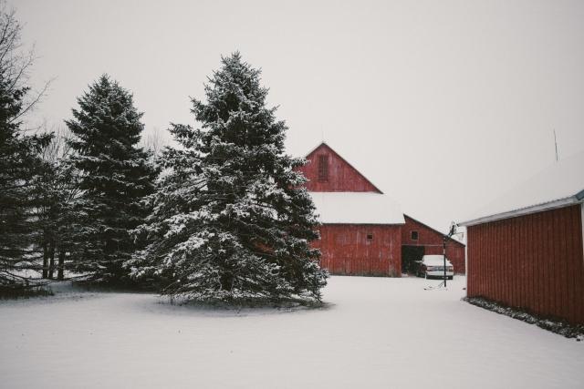 Winter2018-19