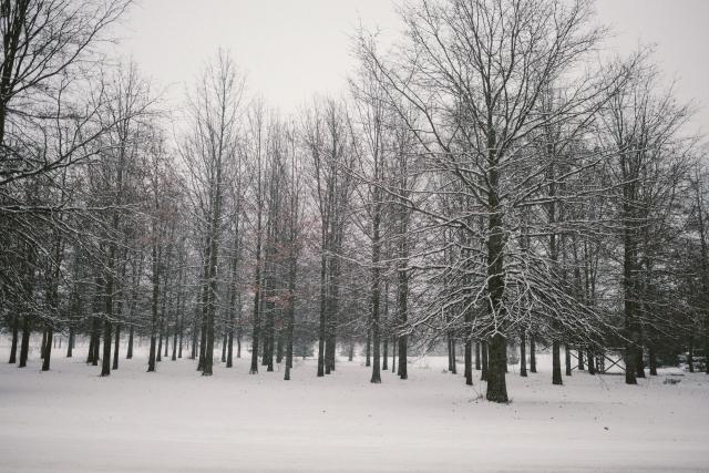Winter2018-21