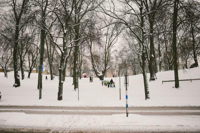 Winter2018-29