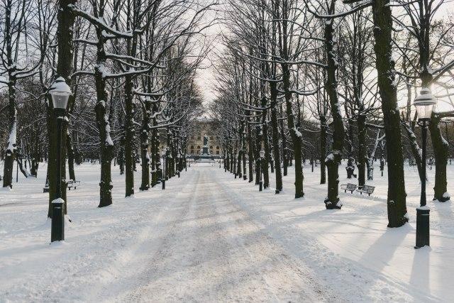 Winter2018-65